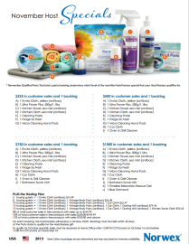 November 2013 Norwex Host Specials USA