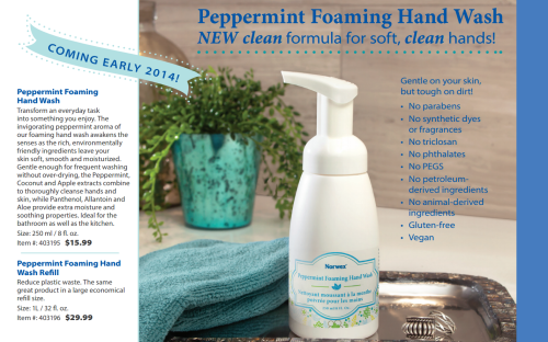 Norwex Peppermint Foam Soap