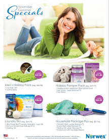 November 2014 Norwex Customer Specials USA