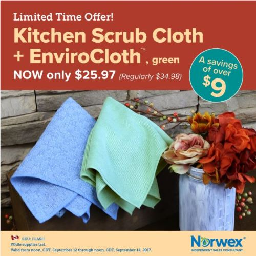September 2017 Norwex Flash Sale